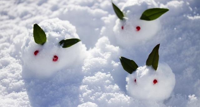 10代女性スマホユーザーの4人に3人は「スノー SNOW」を利用した経験あり | 「スノー SNOW」に関する調査結果